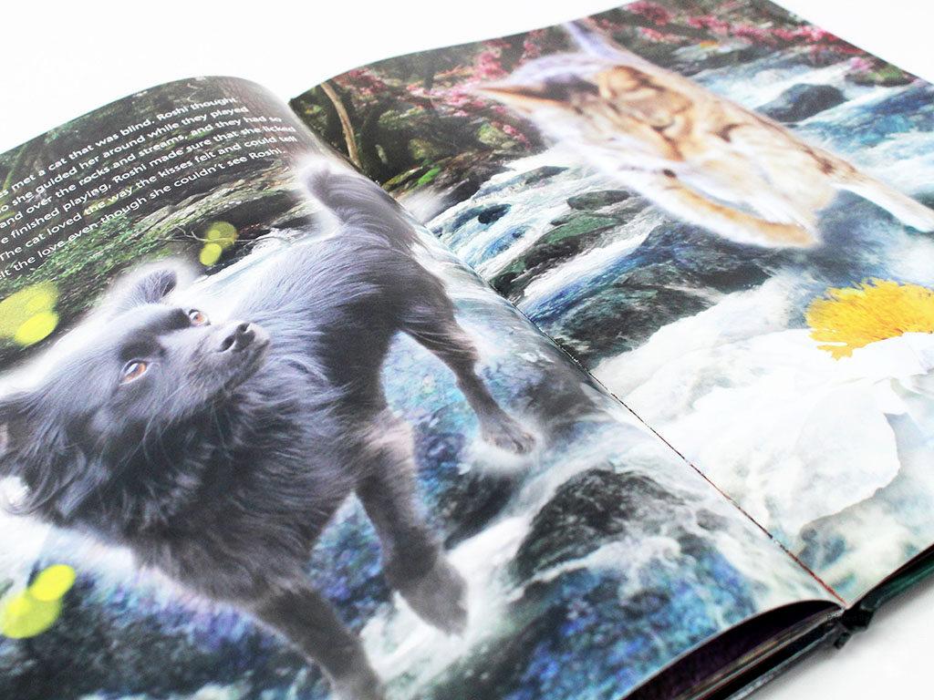 roshi-book-3_nologo